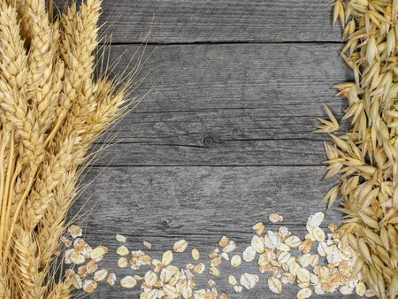 Bundles of wheat and oat spikelets on gray out. Фото со стока