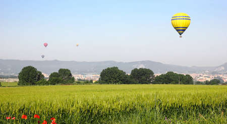 flotating: Hot air balloons landing in a field in Vic, Spain.