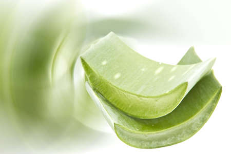 Aloe is widely proved to be very effective in the treatment of various skin disorders, and beauty. It heals wounds and prevents infection as well as strengthens collagen to re-build damaged tissues. photo