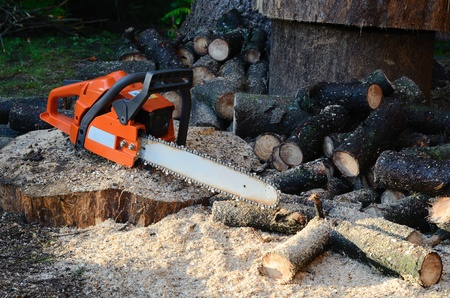 sawed: chainsaw and sawed wood Stock Photo