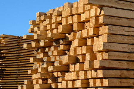 wooden boards stacked at the timber yard