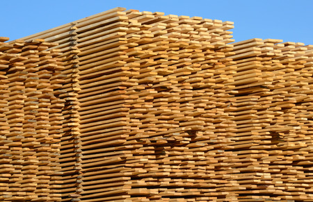 constructional: wooden boards stacked at the timber yard
