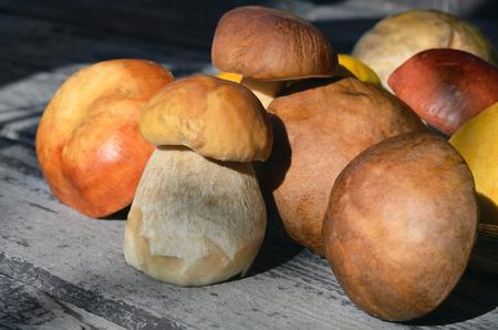 mushrooms on a wooden table Reklamní fotografie