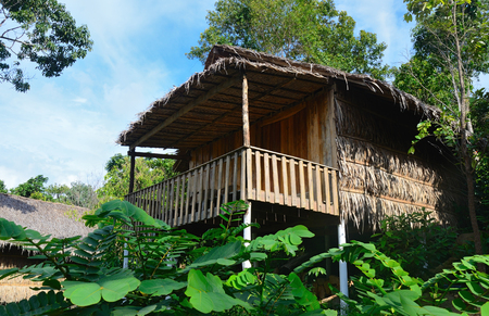 thatched bungalow  in a tropical forest