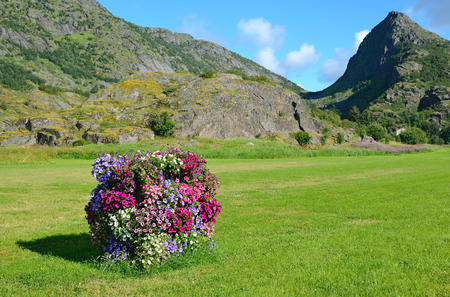 Norwegian rural view with a vertical flowerbed