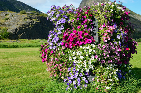 Vertical flowerbed in countryside