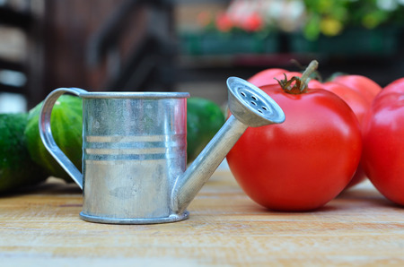 small watering can with tomatoes and cucumbers on the wooden surface. Selective focus