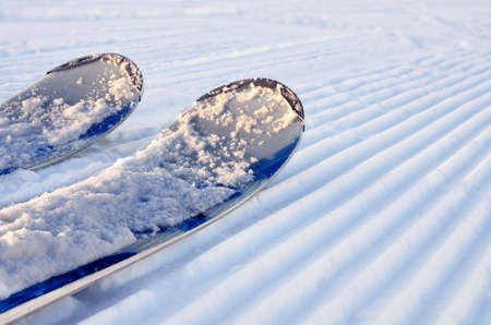 alpine skis in the snow on a prepared slope