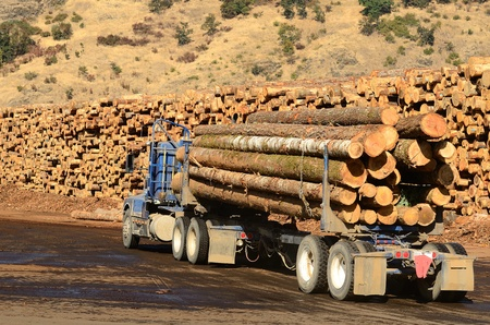A log truck delivers its load to a sawmill in Oregon Stock Photo