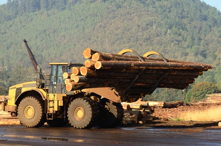 Small wheeled loader moving logs around the log yard at a local sawmill in Oregon Standard-Bild