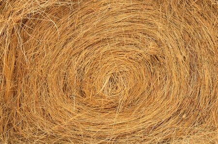 Stack of round bales of grass hay used for winter cattle feed. photo