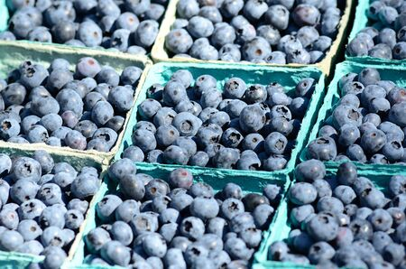 Blueberrys at a farmers market in Oregon Imagens