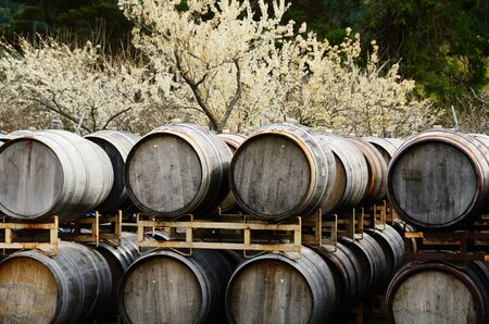 Winebarrels on racks at a small winery along Hwy 101 in Northern California