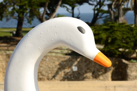 This is one of the Swan Boats of Pacfic Grove in Monterey California - Boats no longer inservice Stock Photo - 12909809