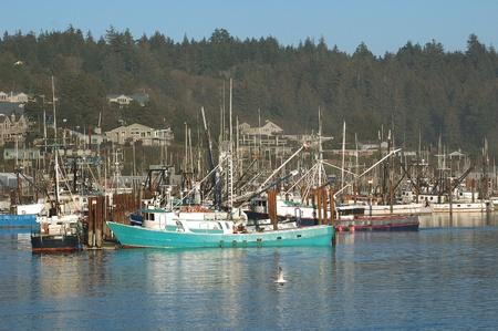 Barcos comerciales Crabbing que regresan con la pesca en la bahía de Yaquina, Newport Oregon Foto de archivo - 13042674