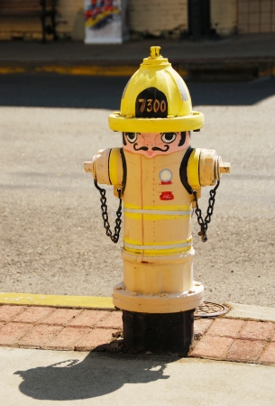 fire hydrant: Painted Fire Hydrant as a fire hydrant in Downtown Grants Pass Oregon has blossomed in a recent revival and the areas pride is obvious