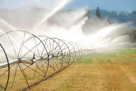 wheel irigation of a alfalpa field in the fertile Garden Valley area of Roseburg Oregon  photo