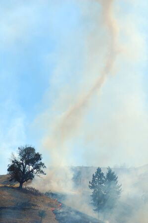a natural cover fire in light grass and trees in an agricultural area in western Oregon photo