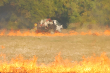 Oat grass stubble field burning on Mike Richie property in the Umpqua Valley near Roseburg Oregon Stock Photo - 14140481