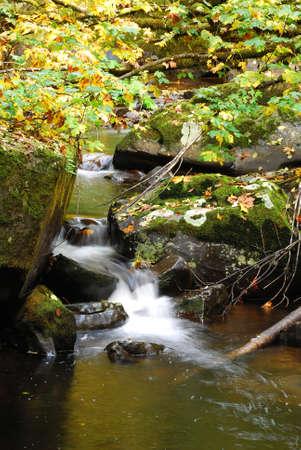 coquille: Lost Creek, che entra nella Forcella Est del fiume Coquille che scorre lungo la strada Wagon Coos Bay, che viaggia tra Roseburg e Coos Bay Oregon