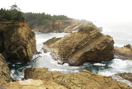 acres: Wave action on sandstone rock formations from the viewing area at Shore Acres State Park near Charleston Oregon Stock Photo