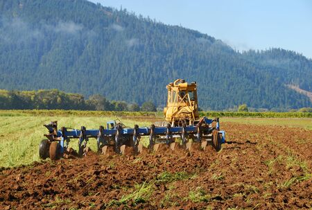 plough machine: Grass being cut and plowed under to sweeten the soil at Henry Estate Winery in Umpqua, near Roseburg Oregon in the great Umpqua Valley wine growing region.