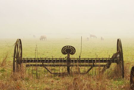 Old spring harrow and sheep in a field off of Fort McKay road between Sutherlin and Oakland OR on a foggy winter morning Stok Fotoğraf - 16431714