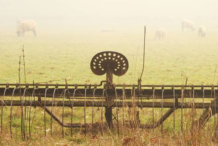 Old spring harrow and sheep in a field off of Fort McKay road between Sutherlin and Oakland OR on a foggy winter morning Stok Fotoğraf - 16431713