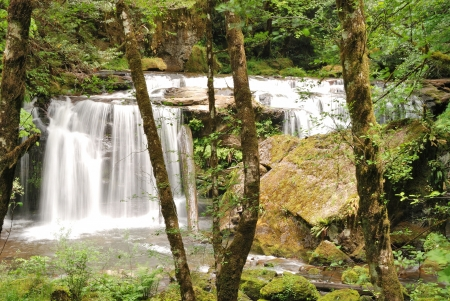 coquille: Small Waterfall on East Fork Coquille River near Sitkum OR off of Coos Bay Wagon Road  Stock Photo