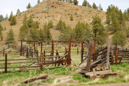 homestead: Old ranch site along State Hwy 19 near Spray Oregon in North Eastern Oregon Stock Photo