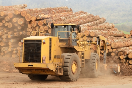 front end: A large wheeled front end log loader working the log yard at a lumber processing mill that specializes in small logs Stock Photo