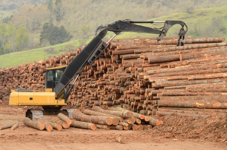 A track hoe excavator log loader working the log yard stack at a lumber processing mill that specializes in small logs