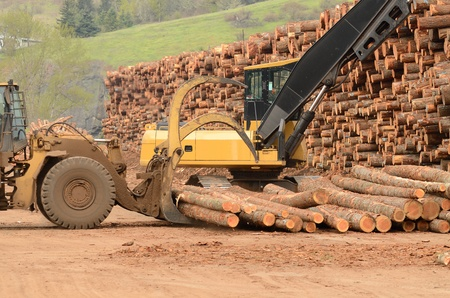 front end: A large wheeled front end log loader and track hoe working the log yard at a lumber processing mill that specializes in small logs