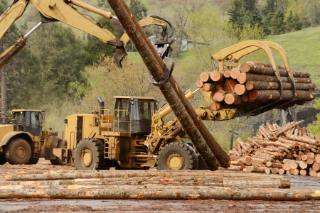large wheeled front end log loader working the log yard at a lumber processing mill that specializes in small logs