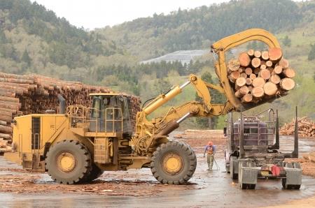 Eine große Rädern Frontend forstkran Entladen eines LKW bei einer log Rundholzplatz bei einer Mühle, die Holzverarbeitung in kleine Scheite spezialisiert Standard-Bild - 20823721