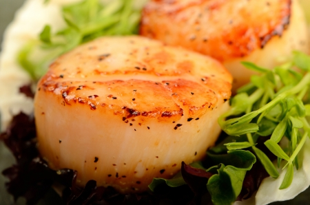 A pair of grilled scallop table top food shot Archivio Fotografico