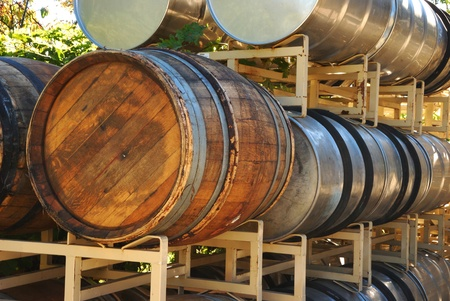 Wine barrels waiting to be filled during a Late October harvest of wine grapes at a Umpqua Oregon winery. photo