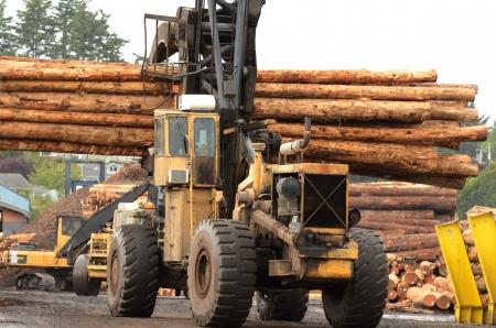 전나무 로그 쿠스 베이와 노스 벤드 오리건에서 밀 독에 아시아에 수출 상선에로드하기 위해 이동하는