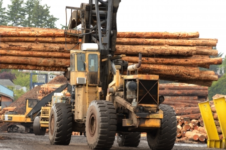 Fir logs being moved for loading onto a commercial ship for export to Asia on the mill dock in Coos Bay and North Bend Oregon Imagens