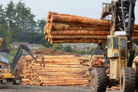 Fir logs being moved for loading onto a commercial ship for export to Asia on the mill dock in Coos Bay and North Bend Oregon Stock Photo