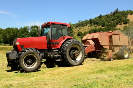 baler: Agriculture tractor pulling a large baler through a field of cut grass hay for winter livestock feed