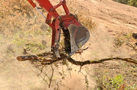 track hoe excavator clearing trees and brush from a hillside in preperation for a new commerical construction development Stock Photo - 22388754