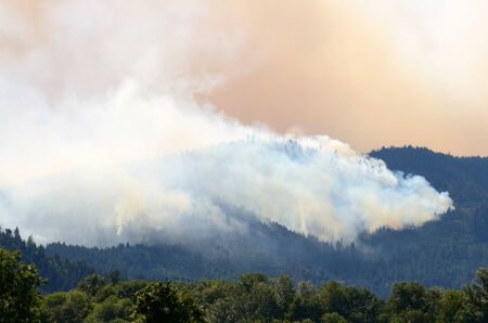 Smoke rises from the Douglas Complex forest fires near Glendale Oregon in steep rugged terrain of the southern coastal range mountains