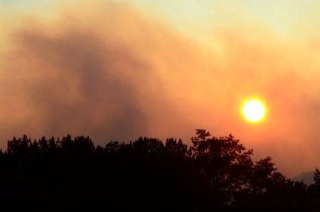 The sun through the smoke of the Douglas Complex forest  fires in Southern Oregon near Glendale