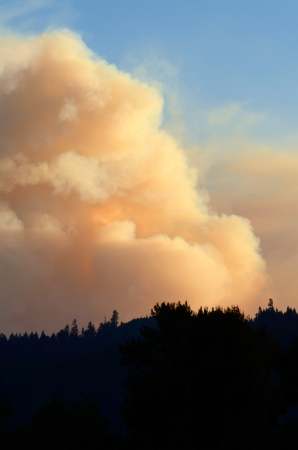 Smoke rises from the Douglas Complex forest fires near Glendale Oregon in steep rugged terrain of the southern coastal range mountains photo
