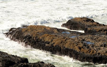 unpredictable: People braving the unpredictable Pacfic Ocean surf at Devils Churn area along the Oregon Coast near Newport