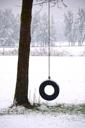 Tire swing during a winter storm near Roseburg Oregon