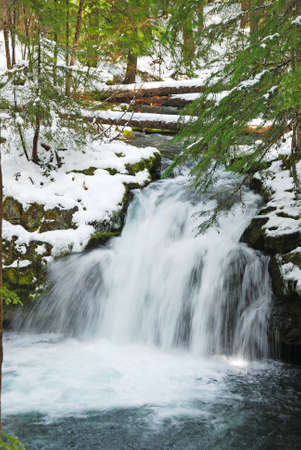 whitehorse: Whitehorse Falls along the North Umpqua River Hwy Stock Photo