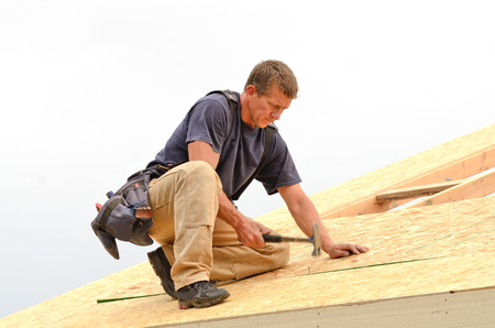 rafters: Framing contractor installing roof sheeting over rafters on a new commercial residential construction project Stock Photo