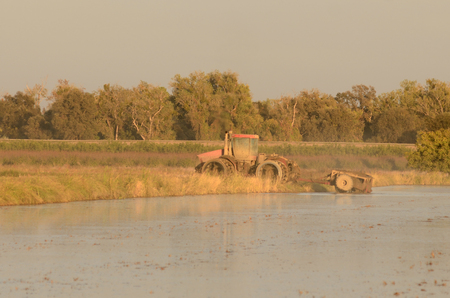 Large agricultural tractor working a cultivated flooded field of rice in the Sacramento valley in California photo